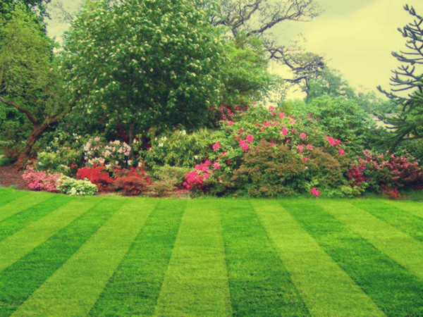 What Makes a Great Landscape Company