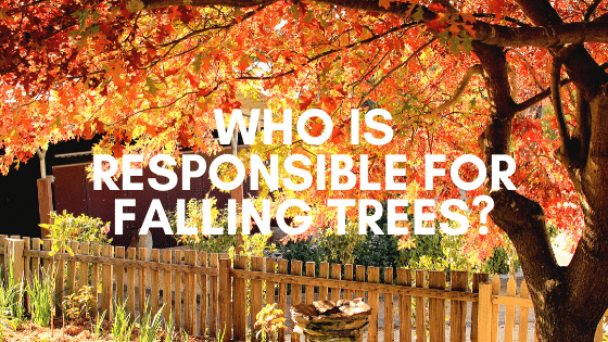 Who is responsbile for falling trees