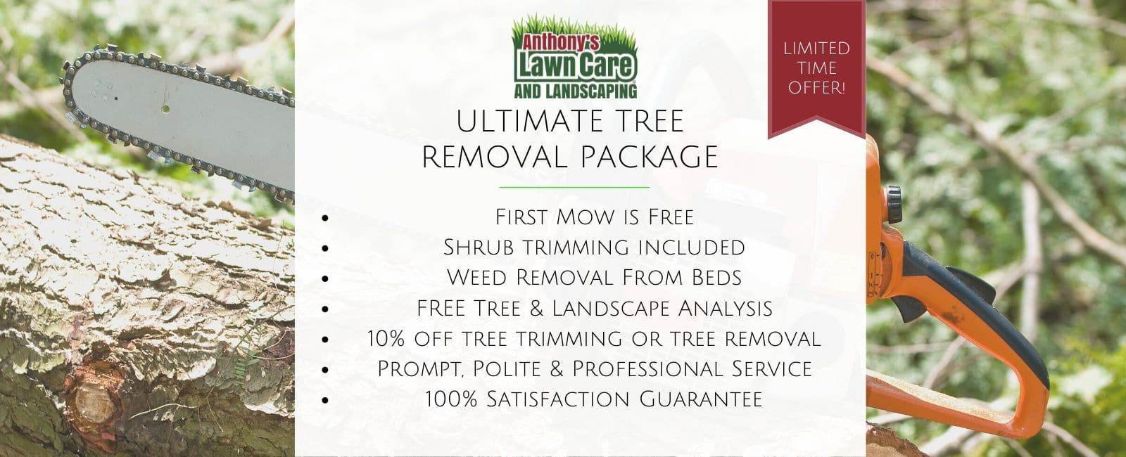 Tree Removal Package
